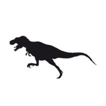 Sticker dinosaure 13