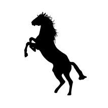 Sticker cheval cabré 1