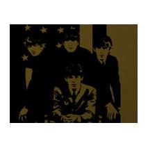 Sticker rockeur 60'