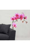 Sticker orchidée rose