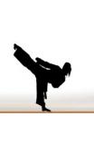 Sticker Taekwondo 4