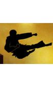 Sticker Taekwondo 1