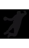 Sticker handball 1