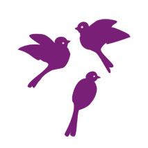 Sticker oiseaux enfants