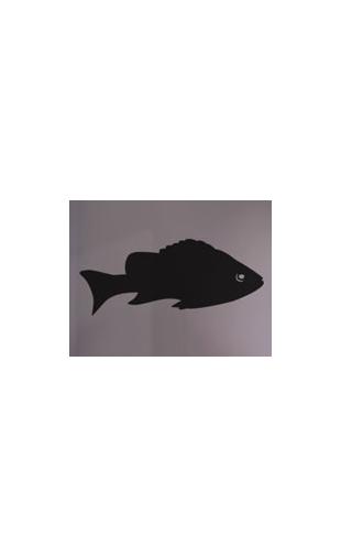 Sticker poisson