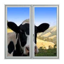Sticker fenêtre sur champs