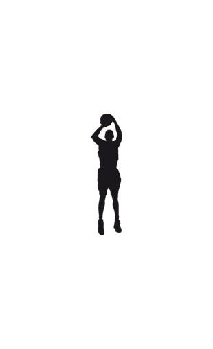 Sticker basket super Dunk