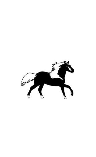 Sticker petit cheval