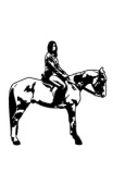Sticker cheval cavaliere